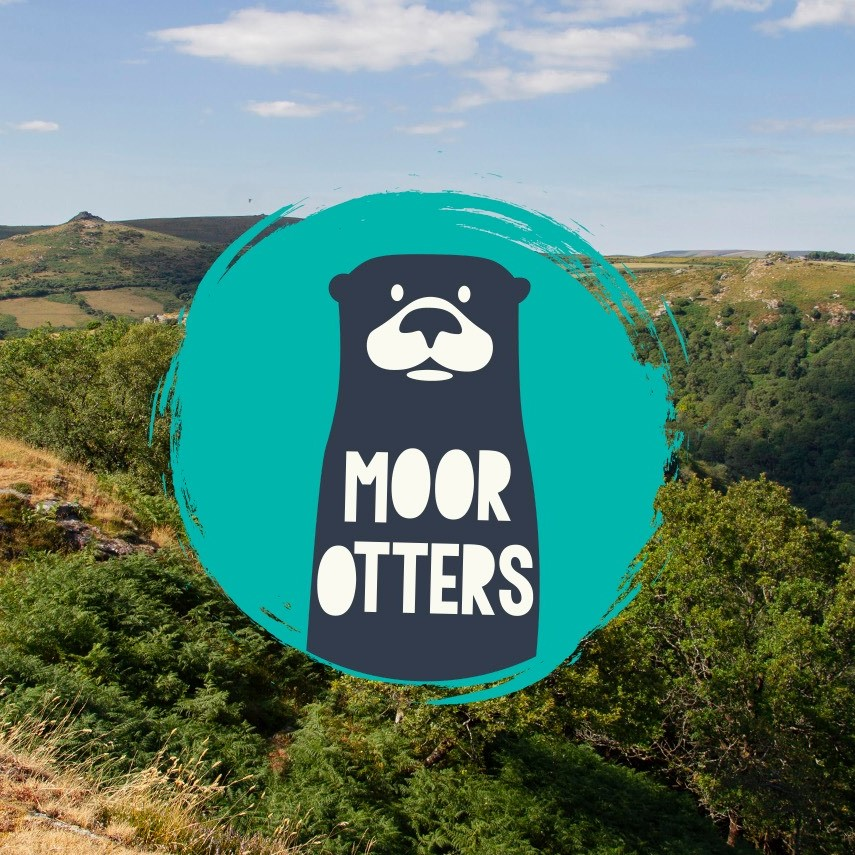 The Moor Otters Arts Trail branching out to Plymouth City Centre in April 2021
